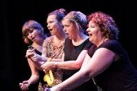 Nederlands Theatersport Toernooi 2013