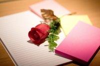 Roos en schrijfspullen
